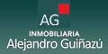 Alejandro Guiñazu - Inmobiliaria