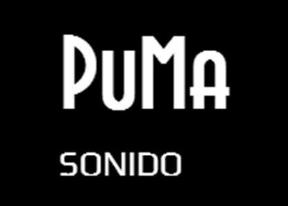 Puma sonido - servicio de sonido profesional