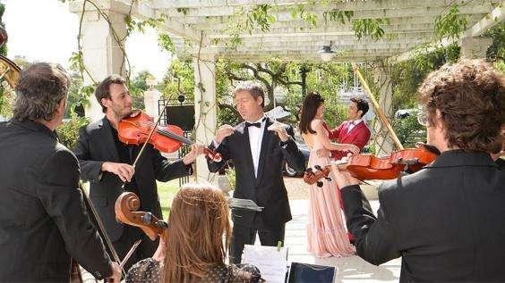 Violines para eventos sociales y empresariales