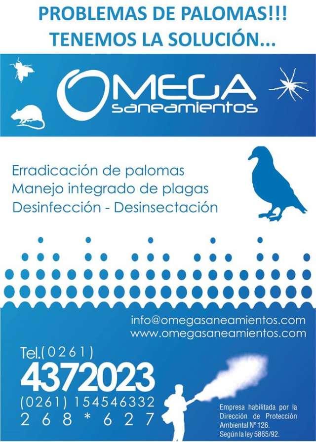 Omega saneamientos control de plagas