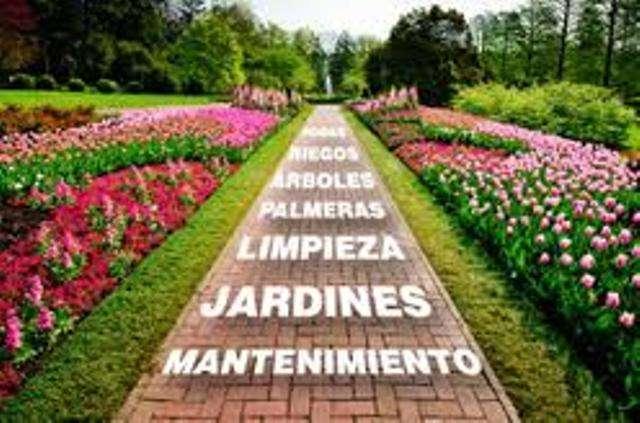 Jardineria -mantenimiento