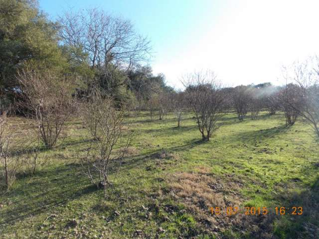 1 hectarea en gualeguaychu zona norte tranquila - permuto