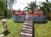 alquilo casa de campo en Gualeguaychu temporario