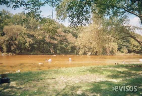 Cabañas muy lindas con bajada al rio