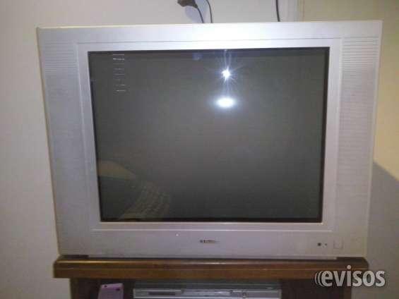 """Vendo televisor de 29"""""""