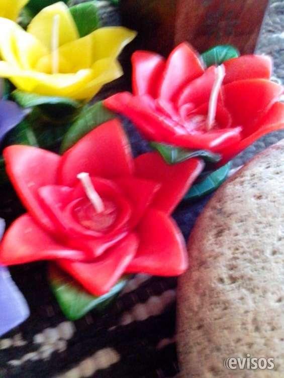 Flor vela nenufar tres tamaños