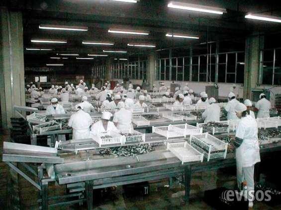 Excelente planta procesadora de pescado - puerto quequen - necochea - prov de buenos aires