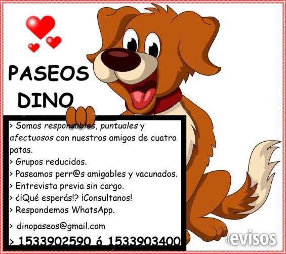 Paseadoras de perros en monte castro/ villa devoto