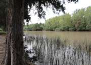 vendo quinta en el delta 15 has sobre rio carabelas