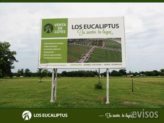 Terreno en los eucaliptus