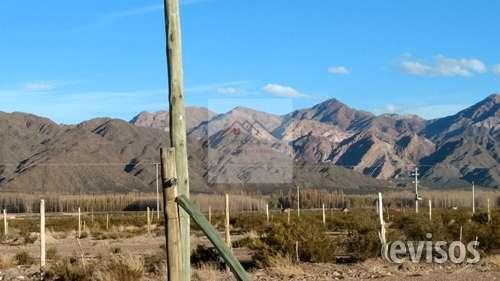 Mendocasa vende excelente terreno en uspallata