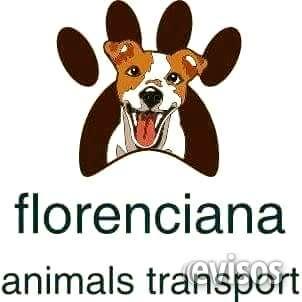 Florenciana animals transport zona sur