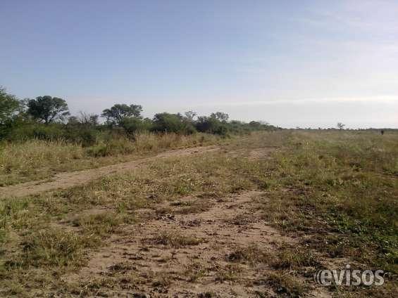 ¡¡¡imperdible vendo campo agricola -ganadero,zona nasalo-s.e. !!!