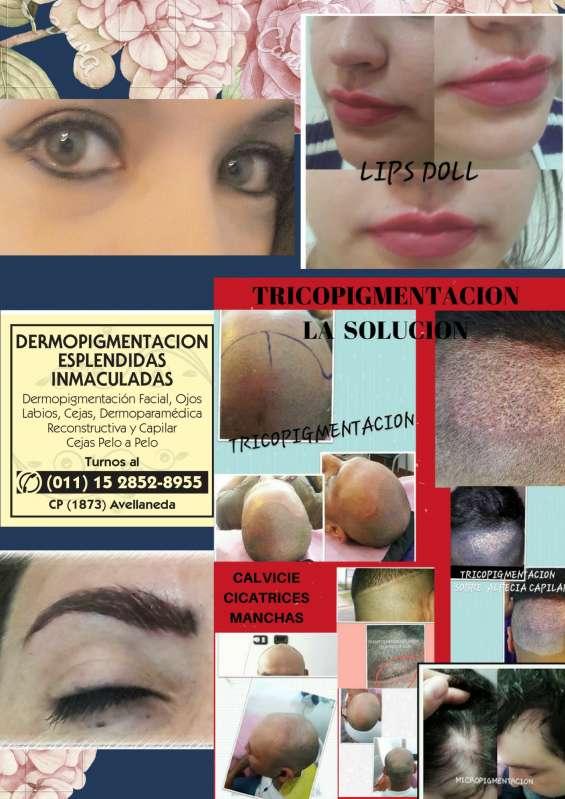 Dermopigmentacion de cejas, zona sur