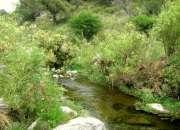 5 hectáreas. san francisco del monte de oro. rode…