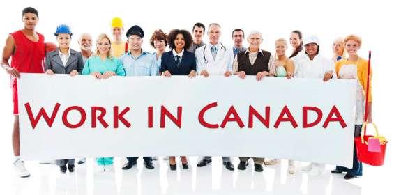 Trabajadores necesarios se necesitan trabajadores urgentes de ingeniería y construcción en