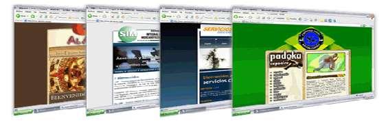 Diseño de paginas web en lanus