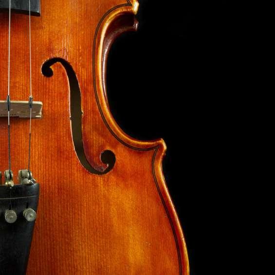 Clases de violin villa devoto villa urquiza presto instrumento clases particulares y grupa