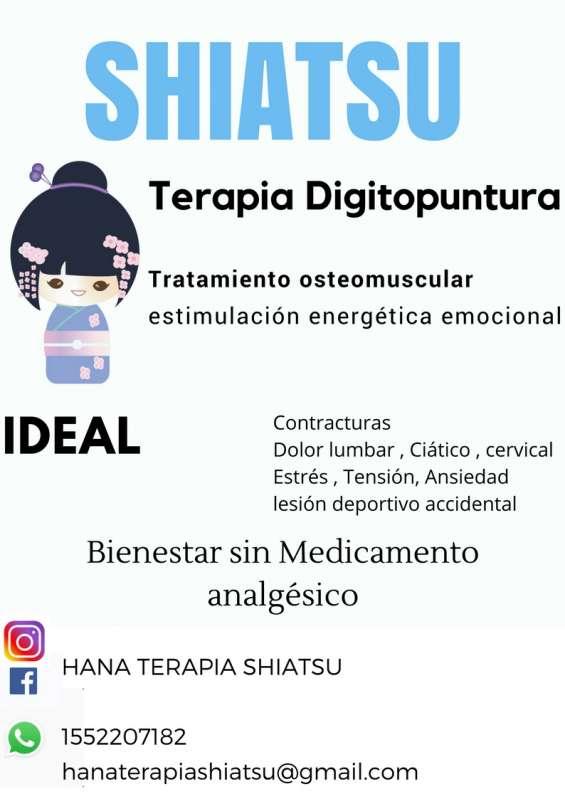 Shiatsu terapia ideal para tension, ansiedad,contracturas,ciatico