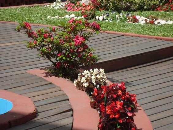 Fotos de Jardinería & paisajismo jardines hue 3