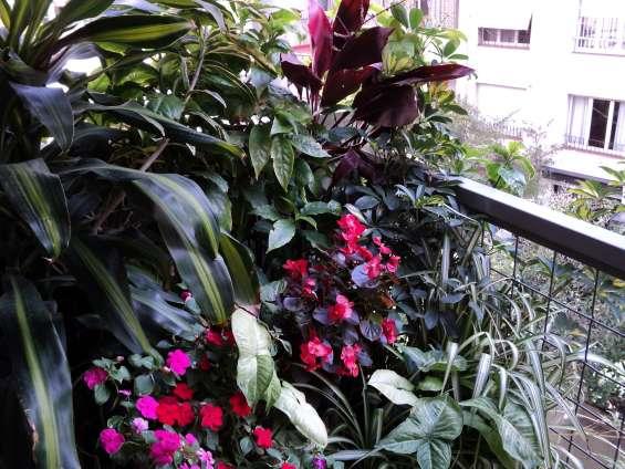 Fotos de Jardinería & paisajismo 3