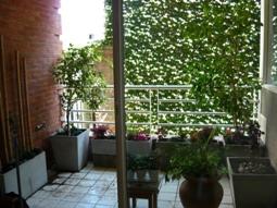 Fotos de Jardinería & paisajismo 4