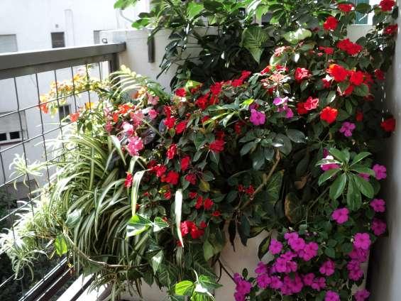 Fotos de Jardinería & paisajismo 2