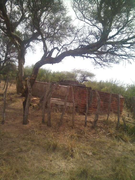 Alquilo campo ganadero a 18 km del limite san luis -la rioja