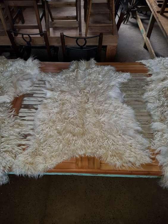 Cueros de cabra 1 x 120