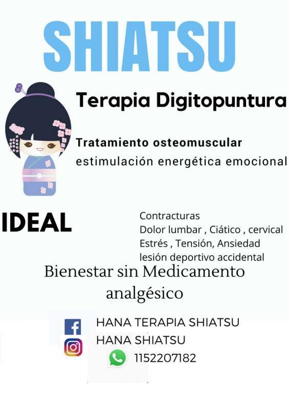 Shiatsu bienestar digitopuntura tecnica japonesa tension, ansiedad, contracturas, estress