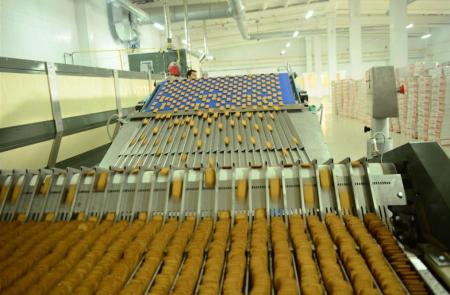 Horno con túnel eléctrico línea de producción