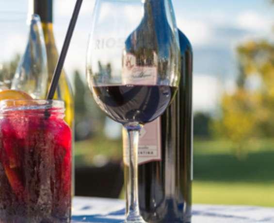 Promo fiestas vino crio malbec