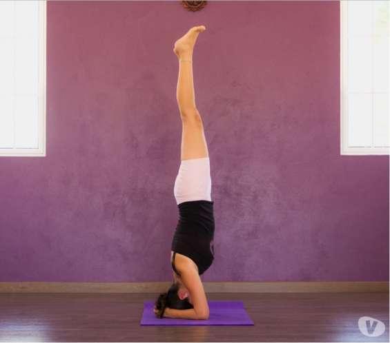 Yoga, meditación, streching, pilates, entrenamiento funcional en circuito, entrenamiento e