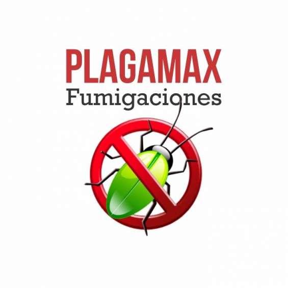 Fumigacion de ratas/avispas/ratas en adrogue plagamax