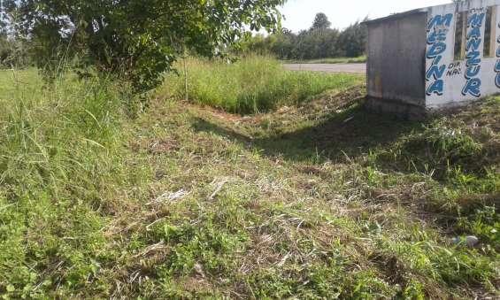 Fotos de Vendo terrenos en los bulacios 3