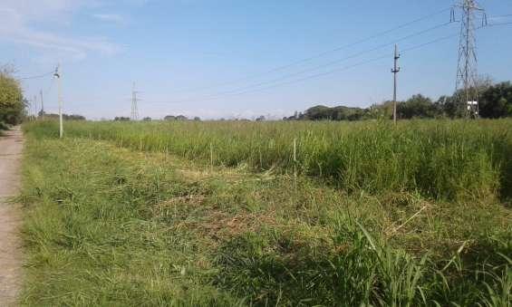Fotos de Vendo terrenos en los bulacios 2
