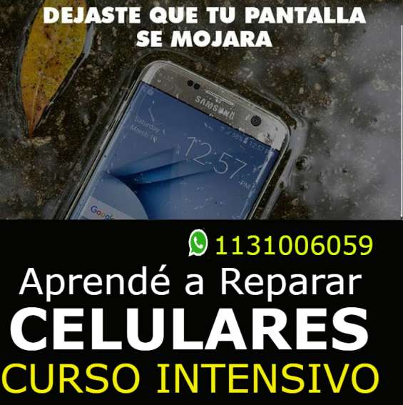 Curso intensivo celulares