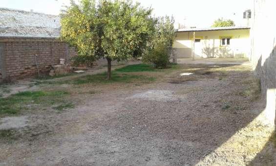 Alquilo casa de 3 dormitorios, patio, servicios en gutierrez, maipú
