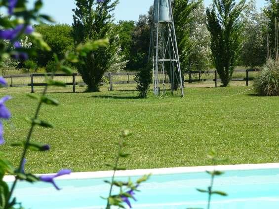 Fotos de Jardines hue jardinería y paisajismo 4