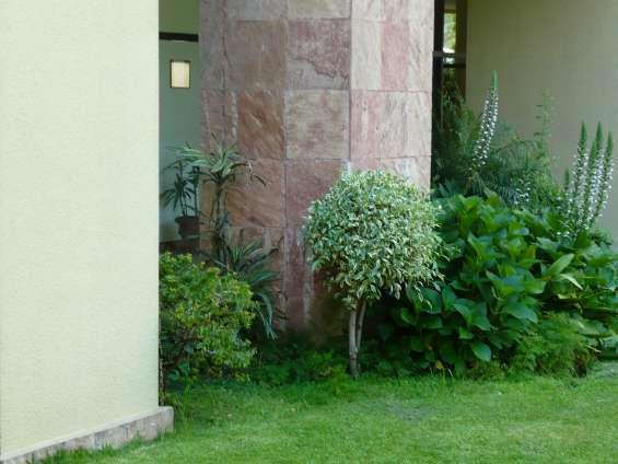 Fotos de Jardines hue jardinería y paisajismo 3