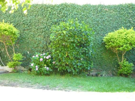 Jardines hue jardinería y paisajismo