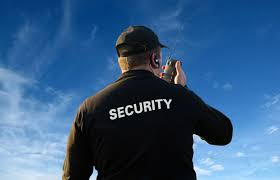 Seguridad en organismos del estado-sanatorios