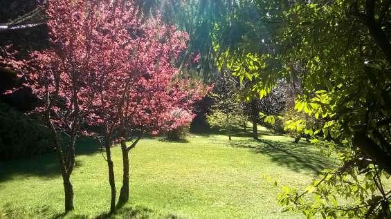 Jardin entre la casa y la costa en primavera