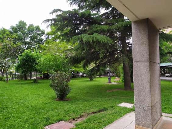 Desde el edificio vista del parque