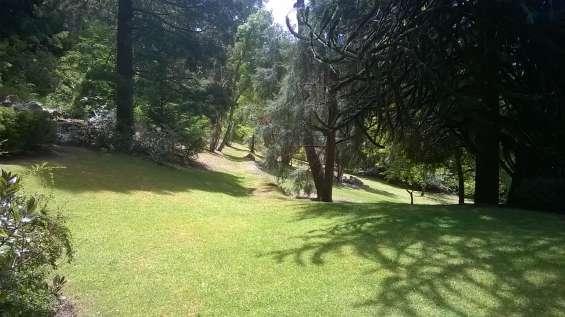 Vista desde la casa hacia el jardin lateral
