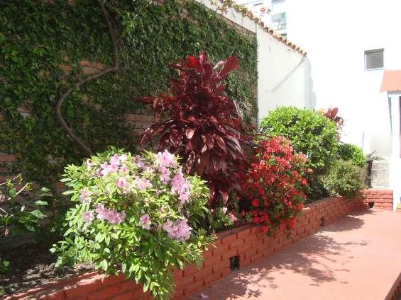 Fotos de Jardinería y paisajismo jardines hue 3
